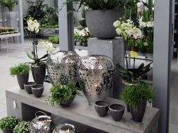 Blumenhaus Alfons Reimann