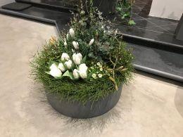 Frühlingsschale-weiß-grün